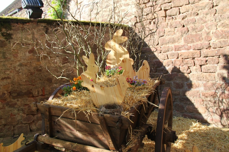 Wangen aux couleurs de Pâques 2011! Img_2836