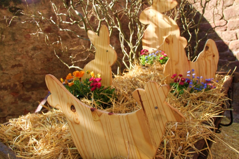 Wangen aux couleurs de Pâques 2011! Img_2837