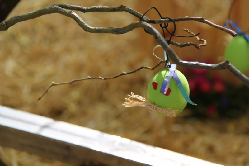 Wangen aux couleurs de Pâques 2011! Img_2914
