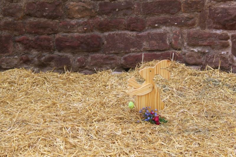Wangen aux couleurs de Pâques 2011! Img_2921