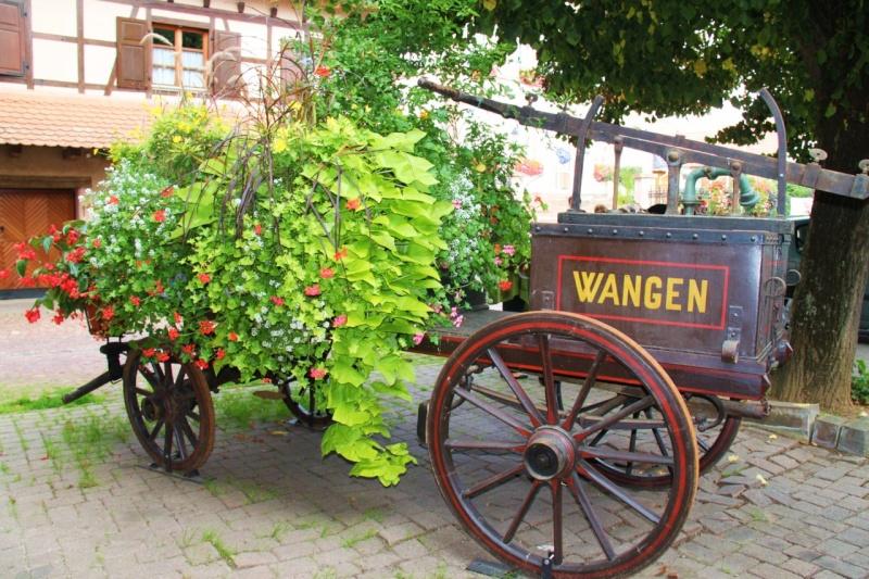 Journées européennes du patrimoine 18 et 19 septembre 2010 à Wangen Img_9618