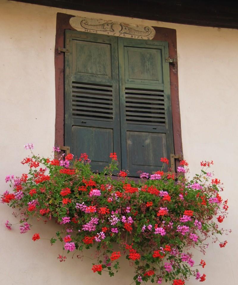 Journées européennes du patrimoine 18 et 19 septembre 2010 à Wangen Img_9634