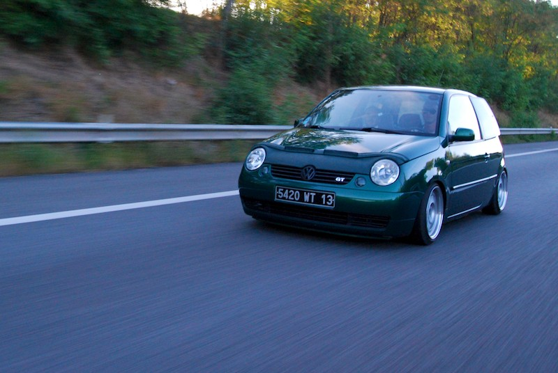 Lupo by MontanaGreen - Page 2 Dsc_1011