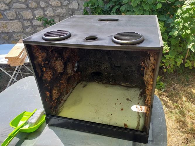 Fabrication de mon terrarium à Dendrobates en PVC expansé  recyclé !! 20190730
