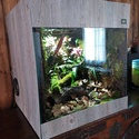 Fabrication de mon terrarium à Dendrobates en PVC expansé  recyclé !! Img_2014