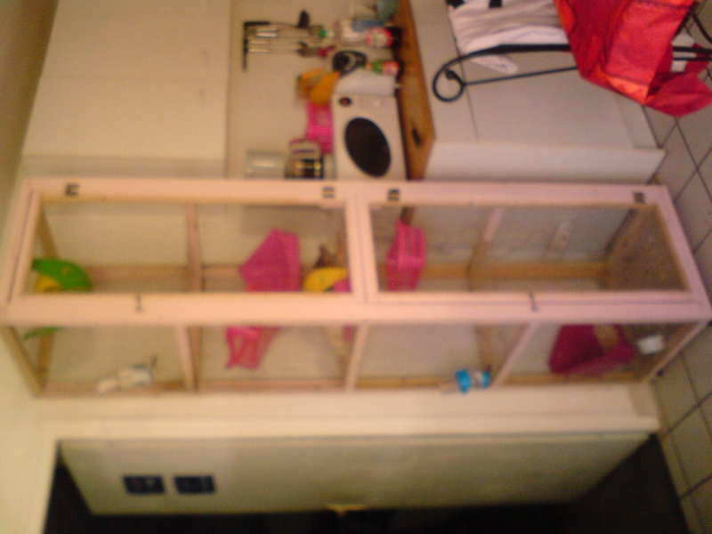 tres grande cage fait main  Dsc00810