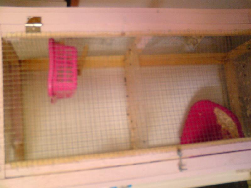 tres grande cage fait main  Dsc00813