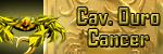 Cavaleiro de Ouro de Câncer NV 189