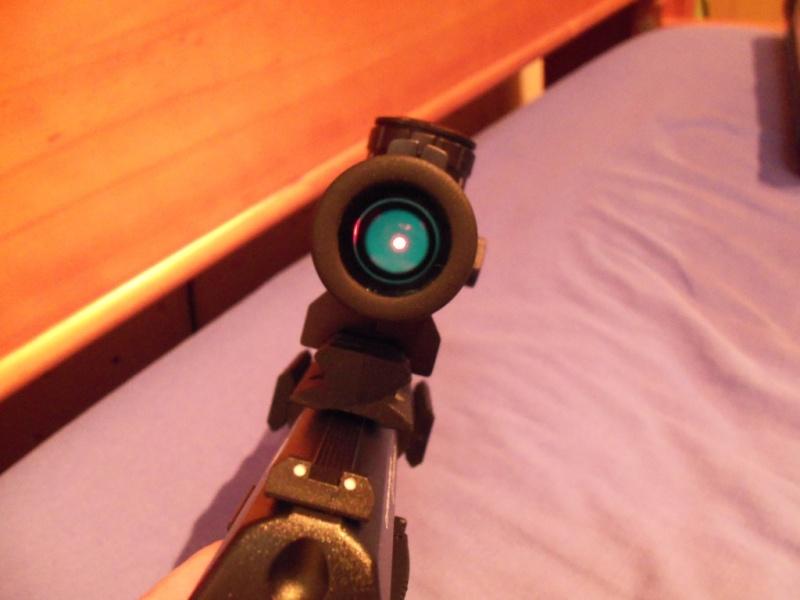 Mon 1er pistolet Co2: Umarex NIGHTHAWK...et son nouveau joujou 100_0119