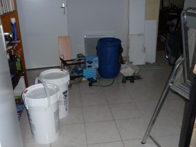Chronique d'un récifal de 864 litres - Page 4 P1010110
