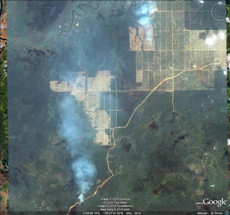 Au feu ! !  [Les incendies découverts dans Google Earth] - Page 6 Feu_110
