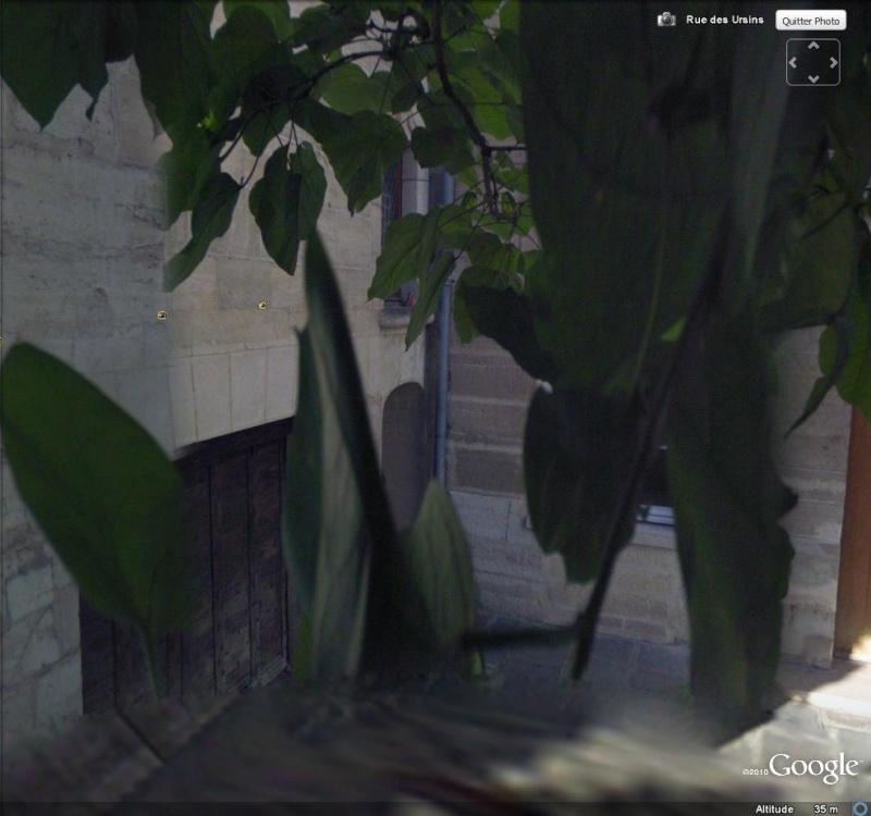 STREET VIEW : La street Car se mange des feuilles  Feuill10