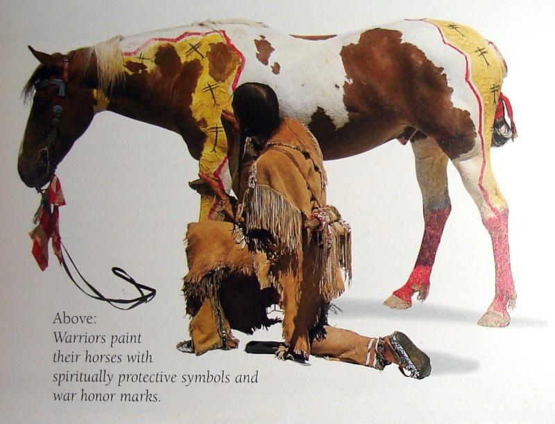 domestication animale Cheval11