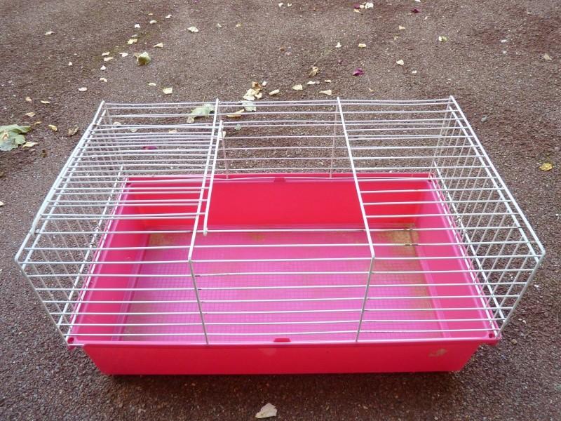 Cage pour cochon d'inde ou autres P1020231
