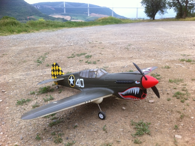 Warbird P-40 mini de HobbyKing Img_1315