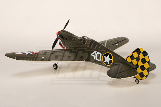 Warbird P-40 mini de HobbyKing Mini-p13