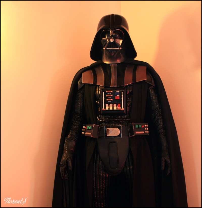 collection n°311: Darth Han Vader610