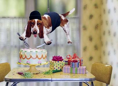 Happy Birthday C/Thru!! Happy-10