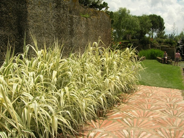 Les jardins de Saint-Adrien Jardin25
