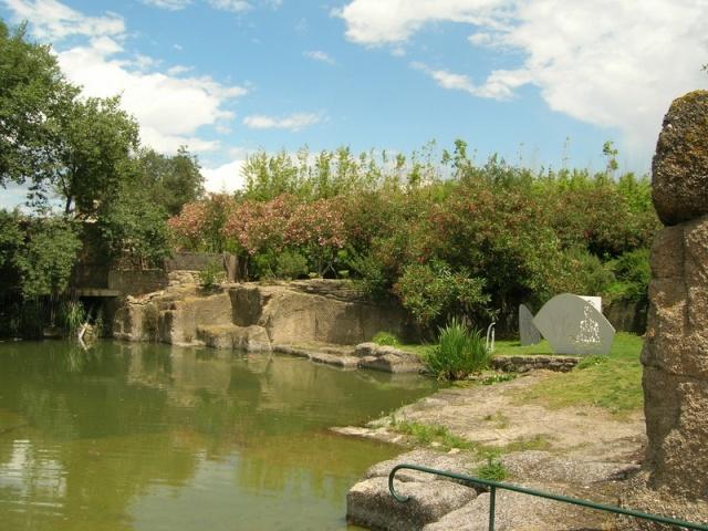 Les jardins de Saint-Adrien Jardin26