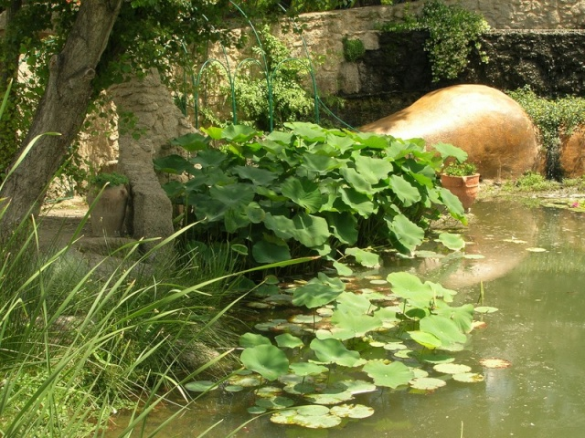 Les jardins de Saint-Adrien Jardin33