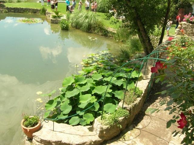 Les jardins de Saint-Adrien Jardin35