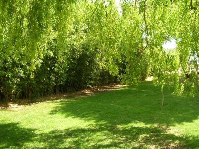 Les jardins de Saint-Adrien Jardin39