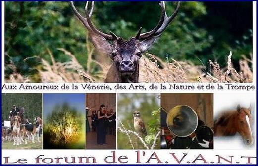 Le forum de l'A.V.A.N.T.