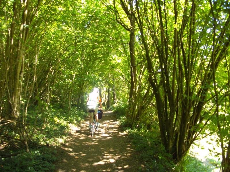 RAVeL 5 Ourthe Liege - Durbuy - Itinéraire N°7 - Sur la route des Ardennes 24_bom10
