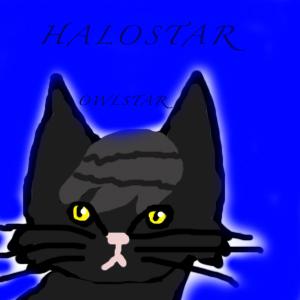 Art Contest! Halost10