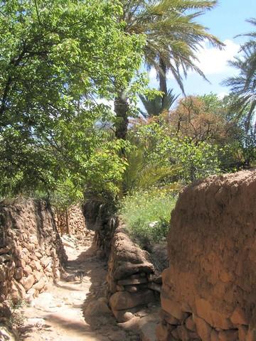 "Info: visite du site"" gravures rupestres piste Figuig- Ich Pict0610"