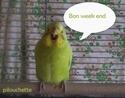 pilou et pilouchette Bon_we10