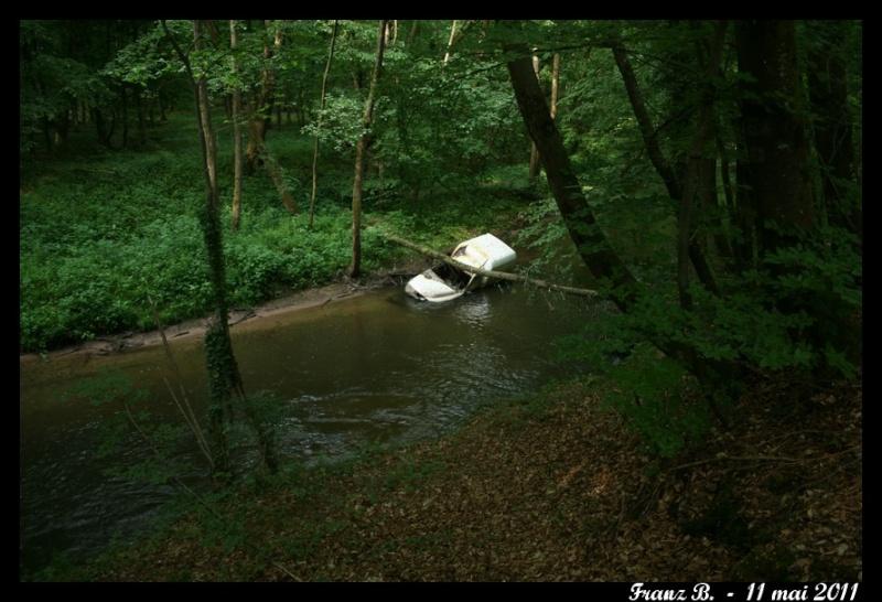 Forêt et nature polluées .... Img_4012