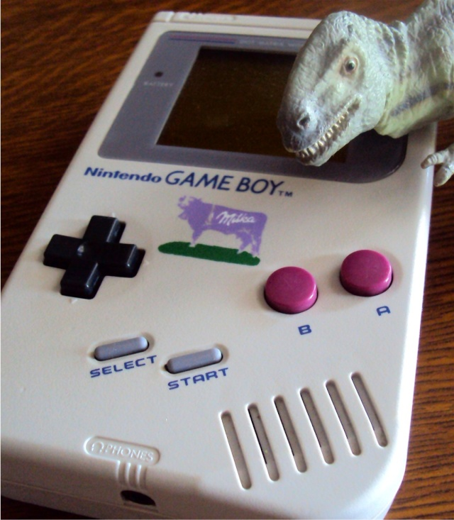 Ma p'tite collec Game Boy / Nintendo / SNK / ARCADE.. [MAJ mai 2013] - Page 4 Dsc07314