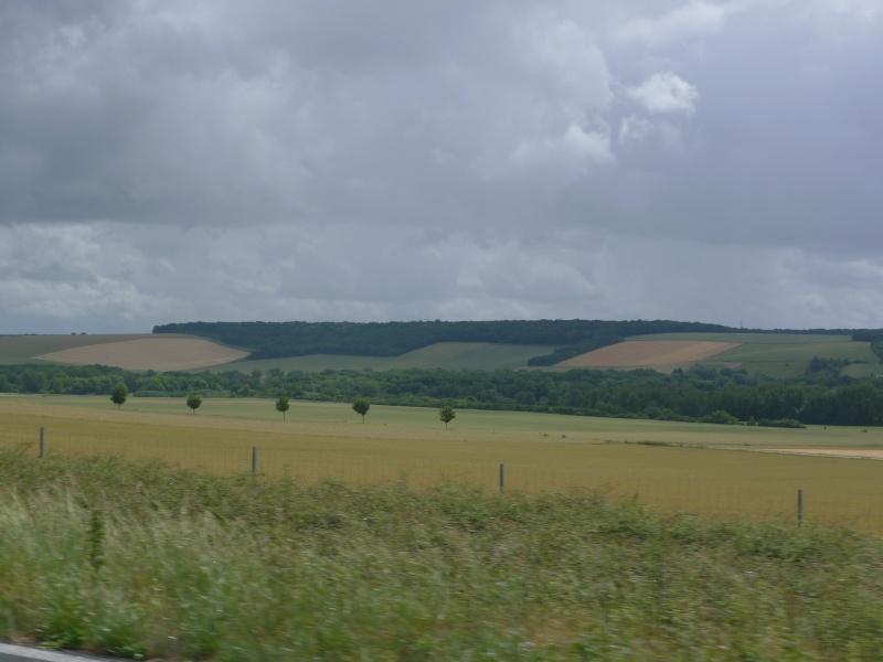 Faut que j'vous raconte  La Ronde des feux de Chaource 2011 L1100511