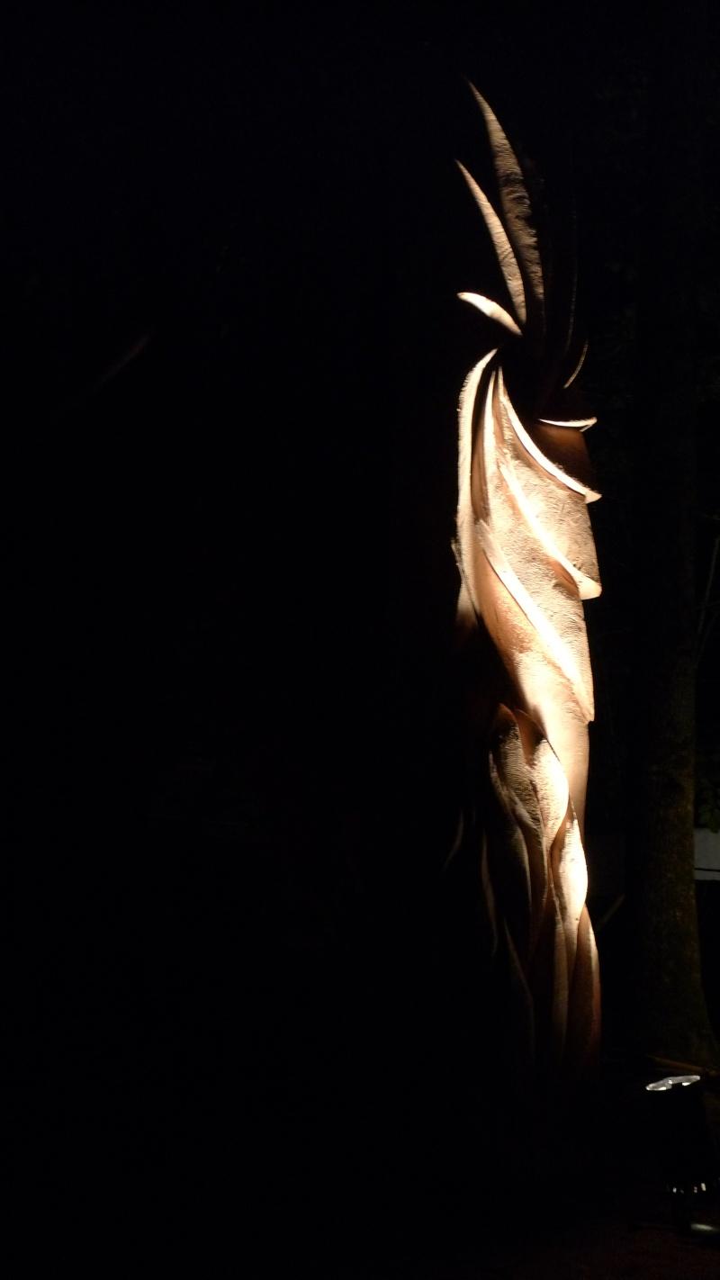 Faut que j'vous raconte  La Ronde des feux de Chaource 2011 L1100714