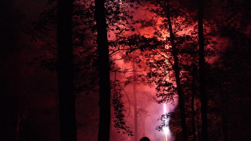 Faut que j'vous raconte  La Ronde des feux de Chaource 2011 L1100721