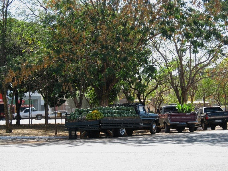 amazoni Camion10