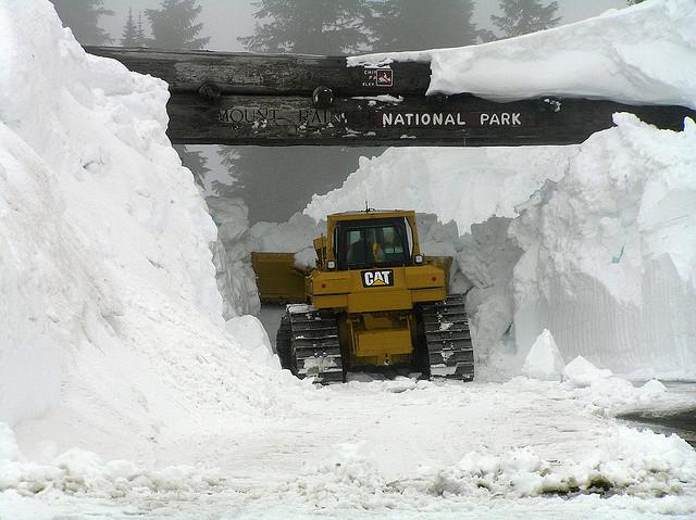 Le leggendarie nevicate del Mount Rainier 24975210
