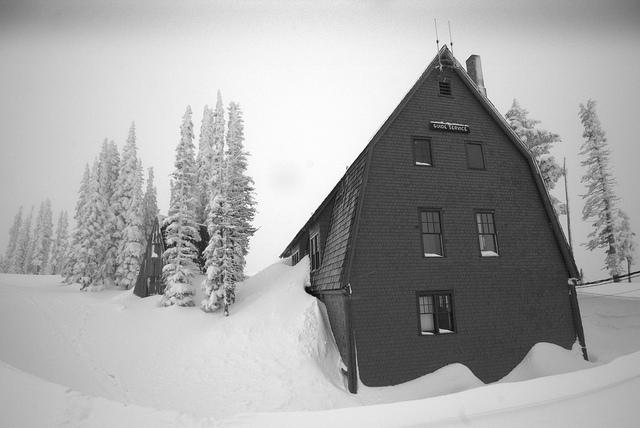 Le leggendarie nevicate del Mount Rainier 45786910