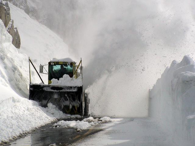Le leggendarie nevicate del Mount Rainier 45866310