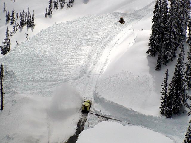 Le leggendarie nevicate del Mount Rainier 46036010