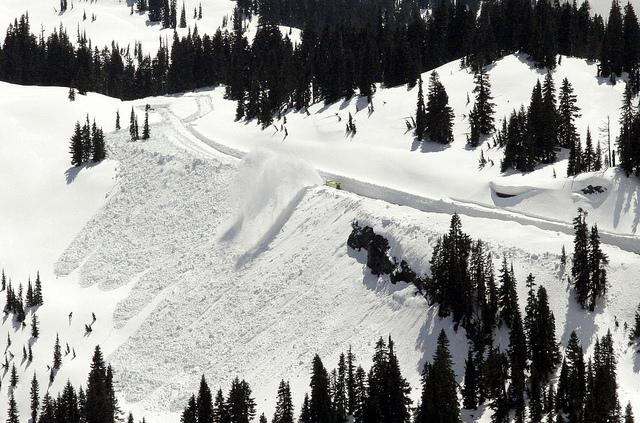 Le leggendarie nevicate del Mount Rainier 46036011