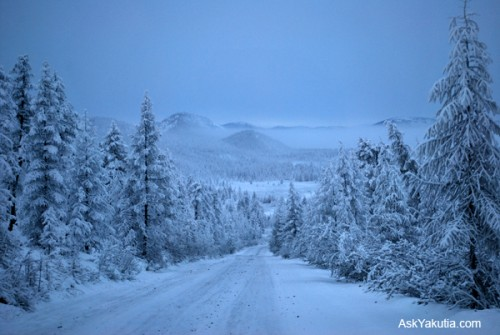 Road of Bones (la strada delle ossa) - Kolymskaya trassa (il tracciato della Kolyma) Dsc_0210
