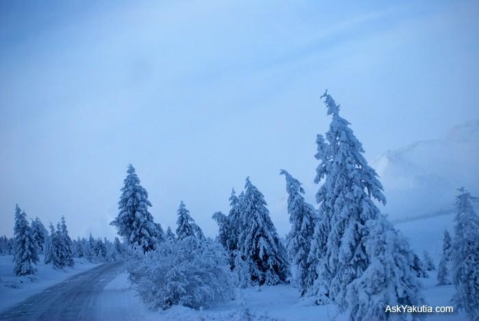 Road of Bones (la strada delle ossa) - Kolymskaya trassa (il tracciato della Kolyma) Dsc_0313