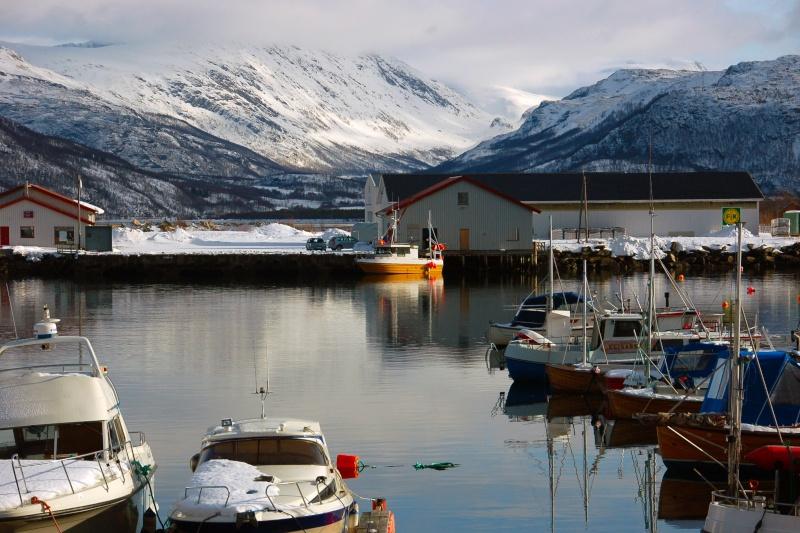 Reportage fotografico viaggio attraverso la Norvegia Dsc_0523