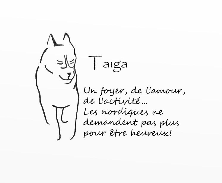 Vote : LOGO T-SHIRT TAIGA  -Cloture le 19 juin minuit-  Logo_t12