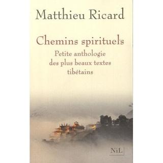 Les chemins spirituels petite anthologie des plus beaux textes tibétains - Matthieu Ricard 41dokw10