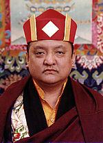 Les voeux de bodhisattva - Kunzig Shamar Rinpoché Photo-10