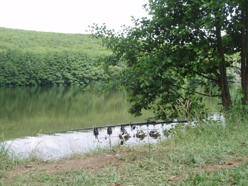 Décrochage de poissons torpilles... P6170310